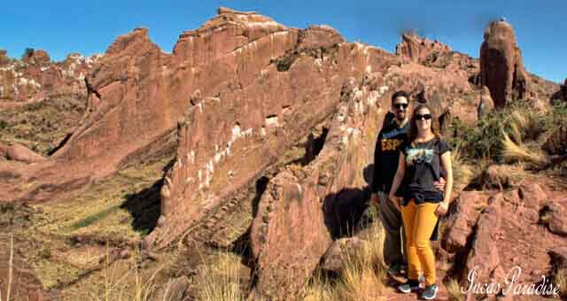 Tour Privado Bosque de Piedras Aramu Muru Juli Puno