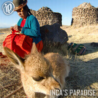 CLASSIC TOURIST PACKAGE - PUNO 4D/3N | TITICACA LAKE