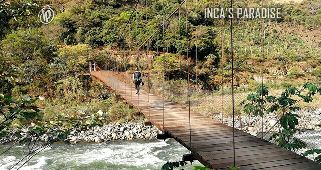 PUENTE COLGANTE EN EL TOUR INCA JUNGLE TRAIL CUSCO